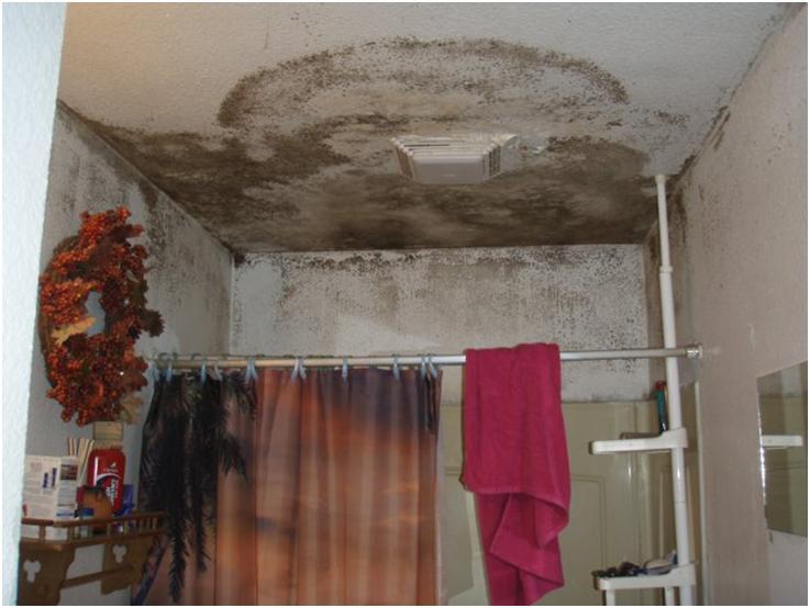 Отсыревший потолок и стены