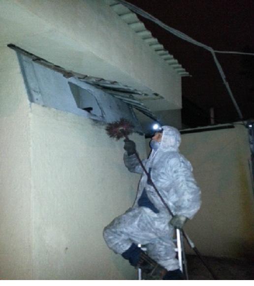 Профессиональное очищение воздушных сетей