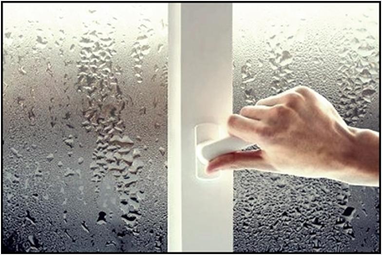 Влажное окно