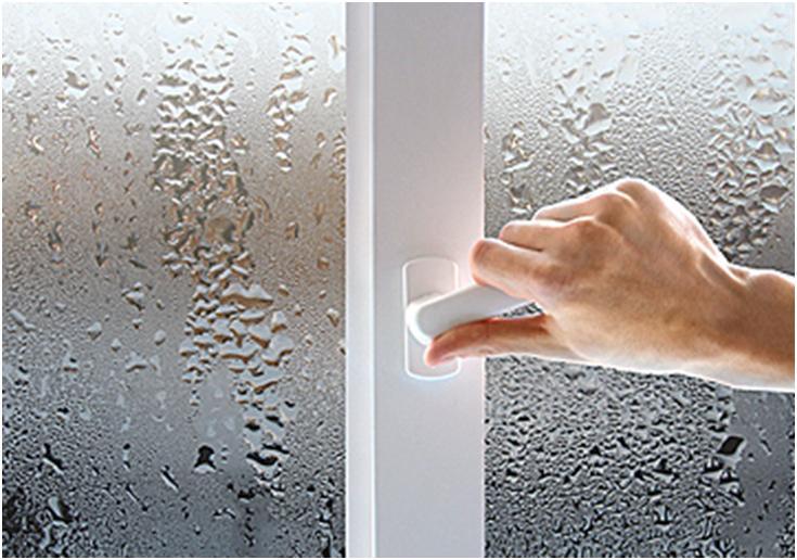 Последствия повышенной влажности